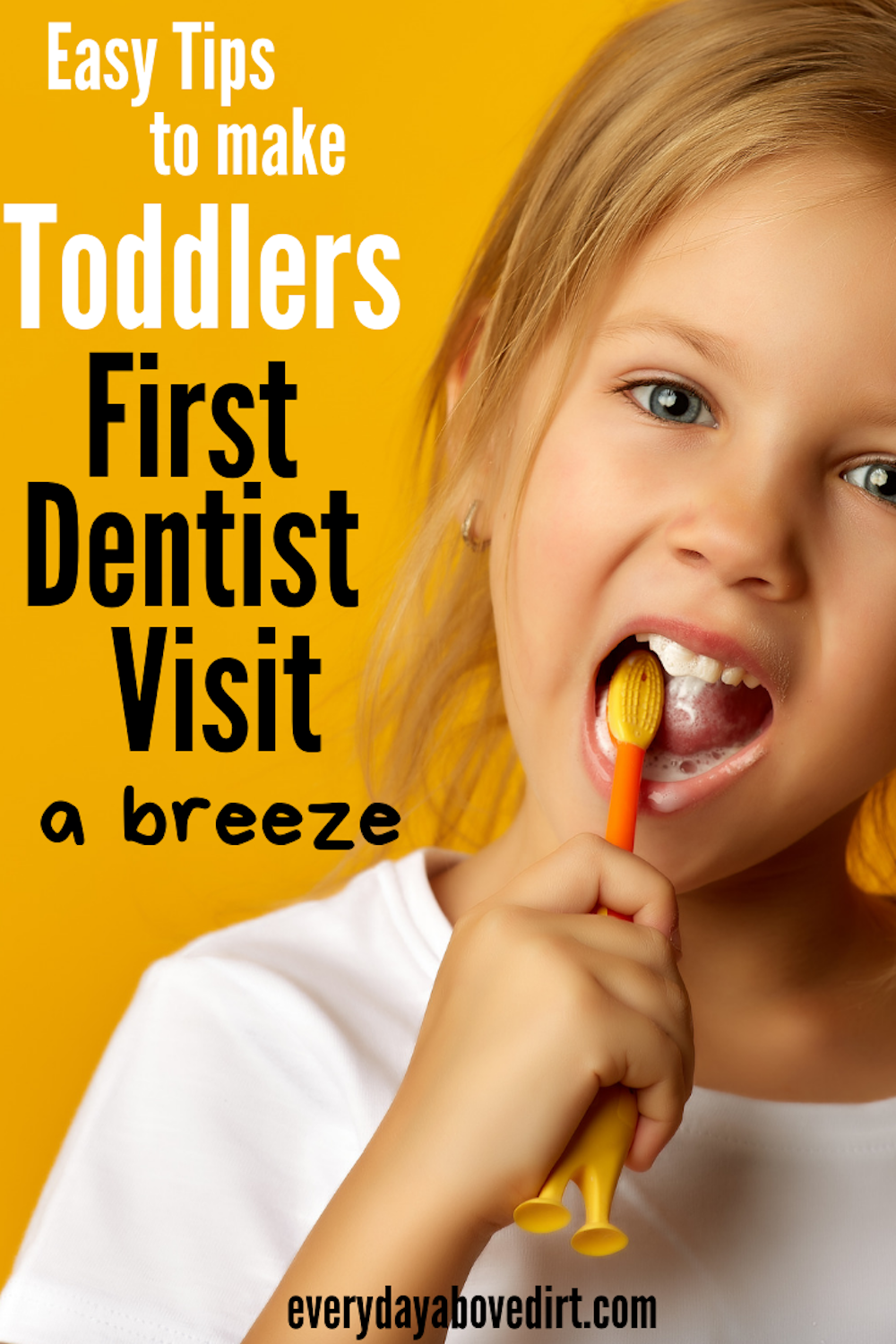 Toddlers First Dentist Visit